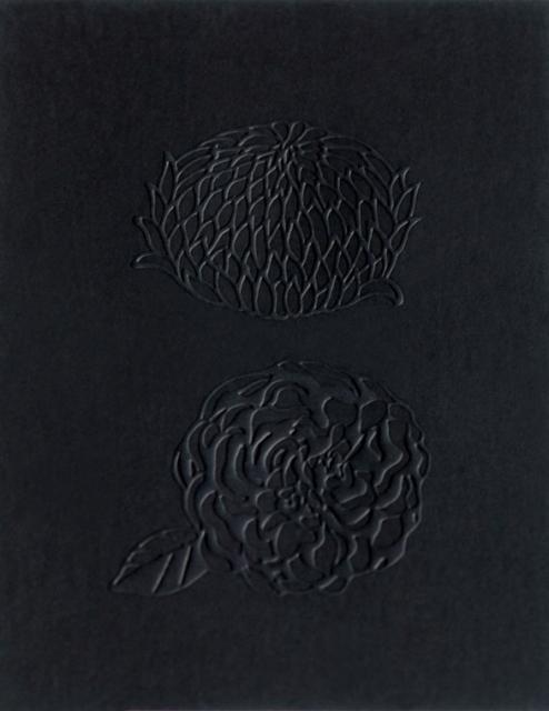 LV-1_card03