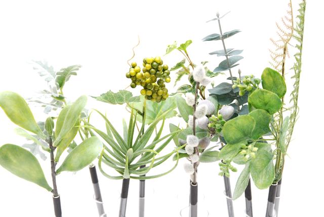 Botanical pen(ボタニカルペン)
