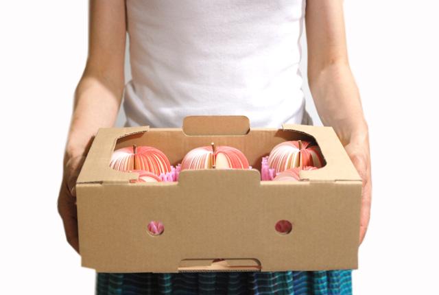 D-BROS フルーツメモ 「KUDAMEMO」 リンゴ箱入り