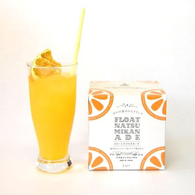 光浦醸造 「フロートナツミカネード」